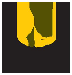 The Banyumas Group
